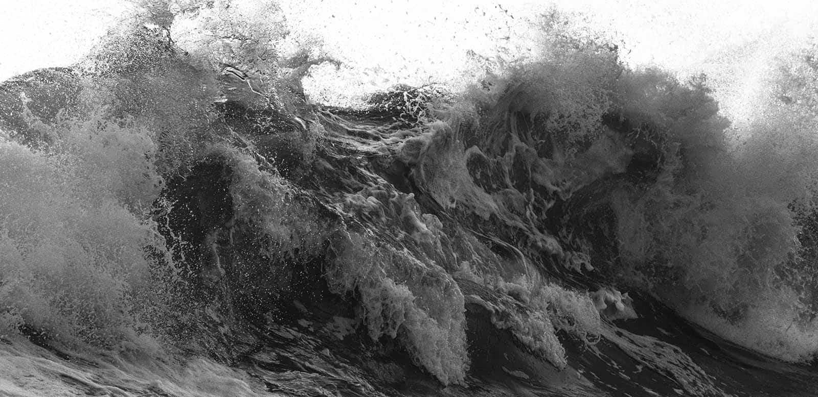 Tsunami Wave Survival