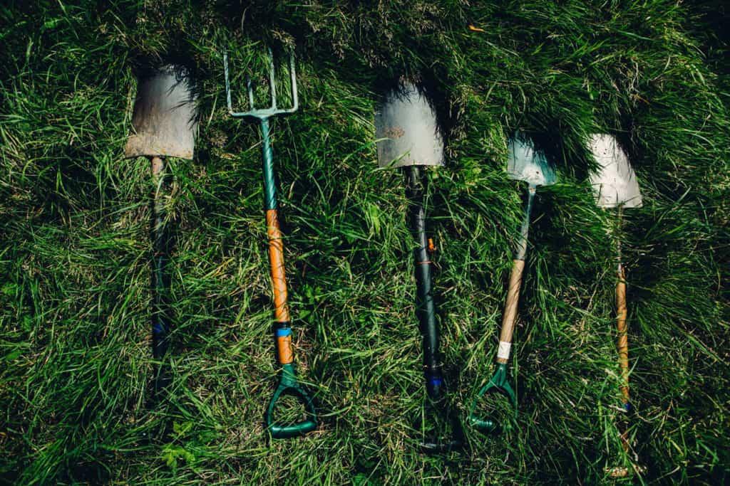 Best survival shovel of 2020 - reviews and comparison
