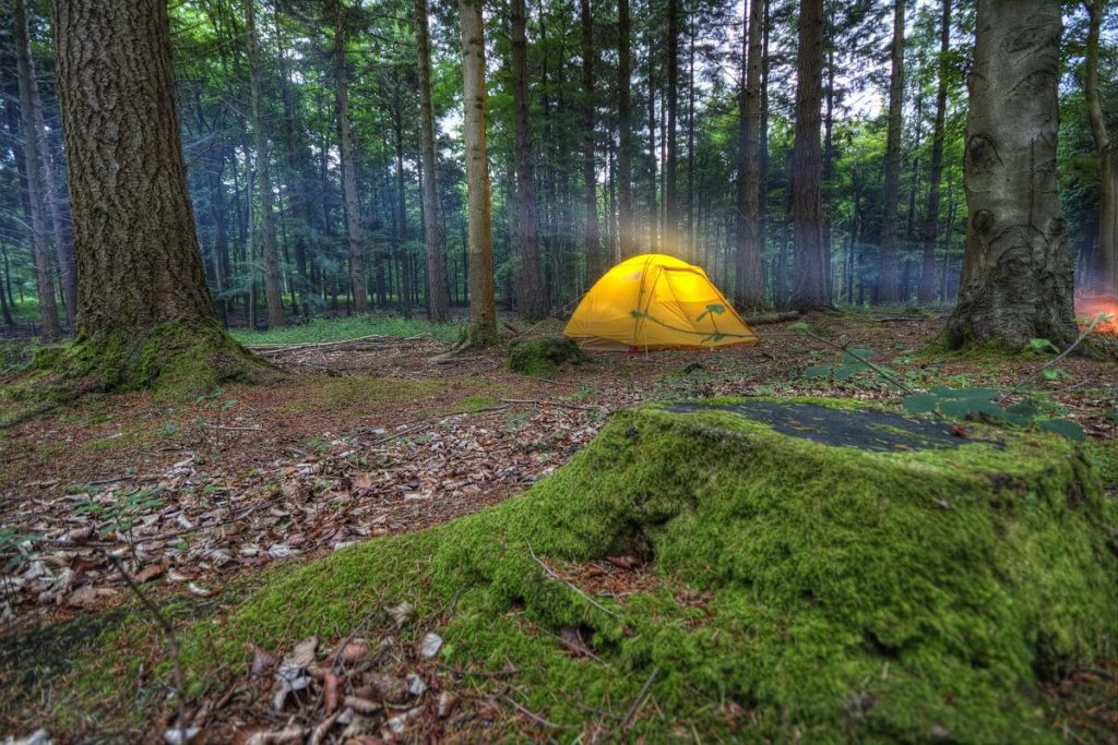 misty camping