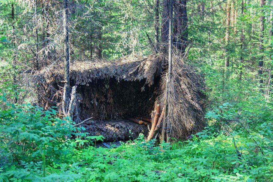 Green woods survival cabin