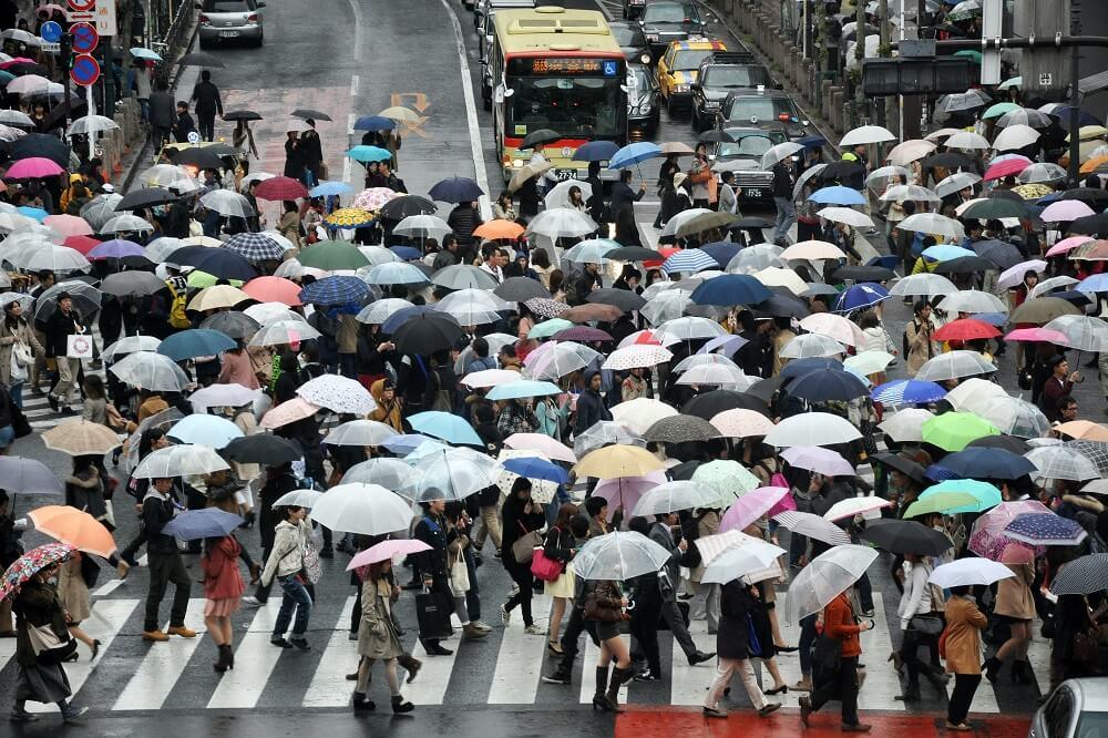 best EDC umbrella