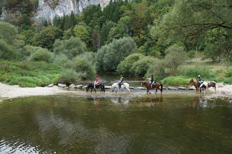 river crossing horse
